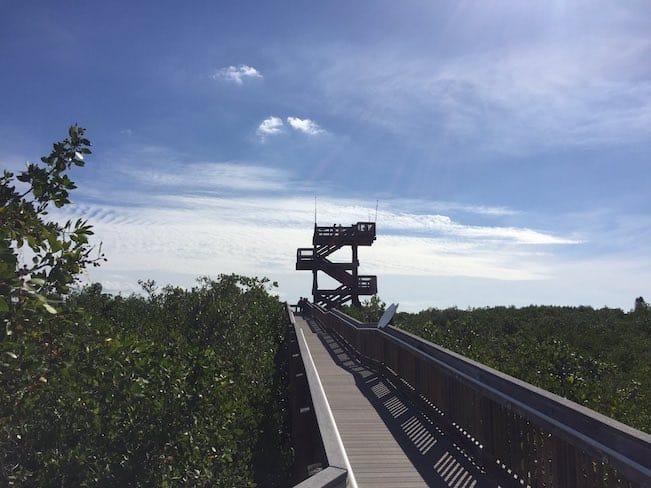 Observation deck at a nature preserve