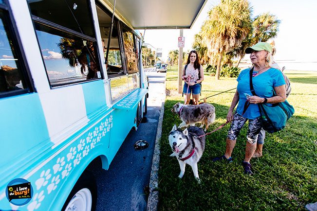 Husky waits for a free sample from Fido's Food Truck