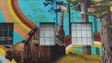 Mural featuring a buffalo and a giraffe against a blue background