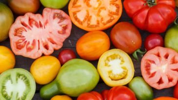 Sliced tomatoes and peppers