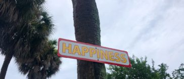 "Photo of a sign on a palm tree that reads ""Happiness"" in yellow bubble font"
