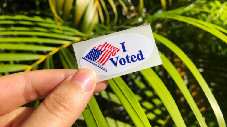 I voted sticker held up against a green palm tree background