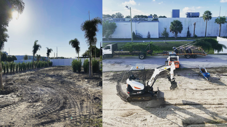 Construction and installation of palm trees in new art garden
