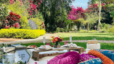 Photo of a picnic setup in a large garden